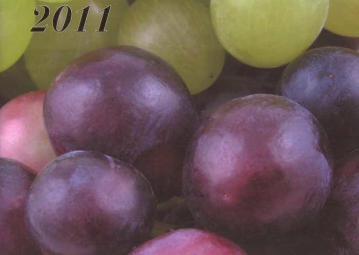 copertina-maroni-2011